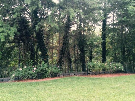 Residence Inn Atlanta Norcross/Peachtree Corners Photo
