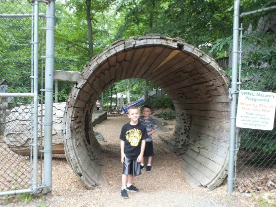 Stamford Museum & Nature Center: The giant log entrance to the slide park.