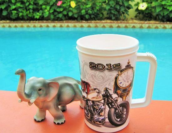Leesburg, Flórida: Elephant Bar 2015