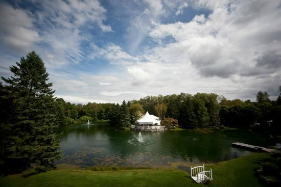 Nestleton, Canada: Pond