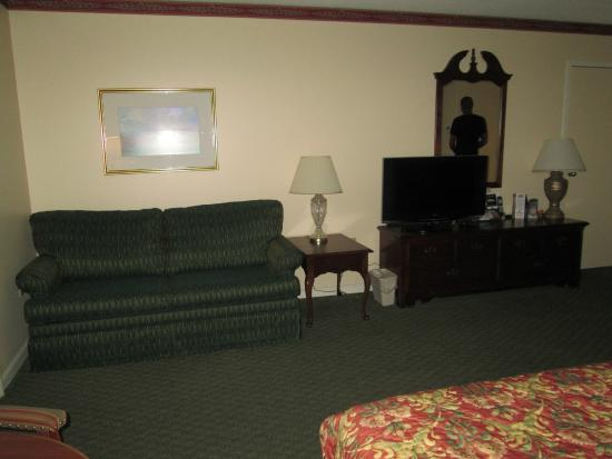 Fairbanks Inn: TV and room
