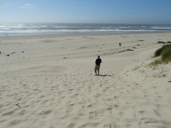 Oregon Dunes National Recreation Area: Oregon's best kept secret. White Sand Dunes!