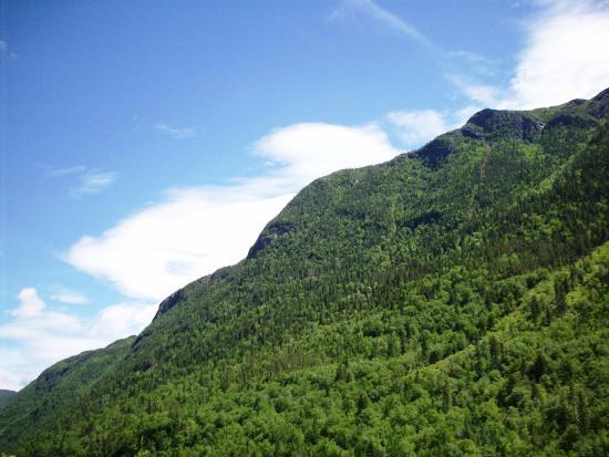 Parc Régional des Hautes-Gorges de la Rivière Malbaie: View from the path