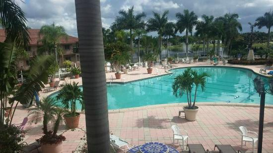 Pool Picture Of Royal Inn Palm