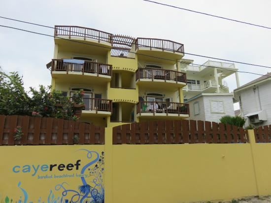 CayeReef: view from the street