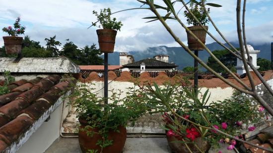 Hotel Sor Juana : roof top view