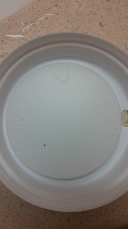 Hampton Inn Virginia Beach-Oceanfront South: bedbug in 613