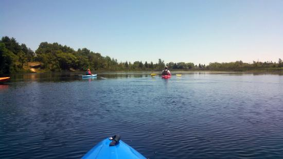 Island Park & Wildlife Sanctuary: On open water in the middle of the sanctuary