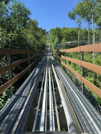 Alpine Coaster: The track going up.