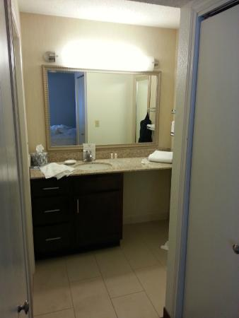 Residence Inn Ann Arbor: Vanity area.
