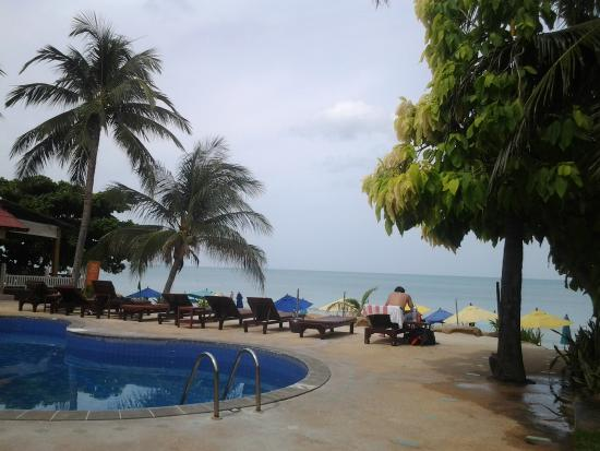 Samui Beach Apartments: Swimming pool at beachfront
