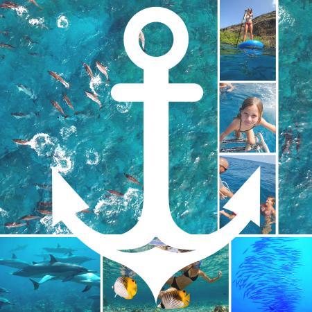 Alii Ocean Tours