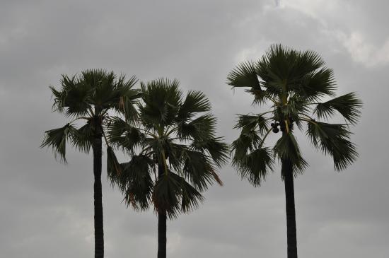 Dhola-ri-Dhani: Scenic