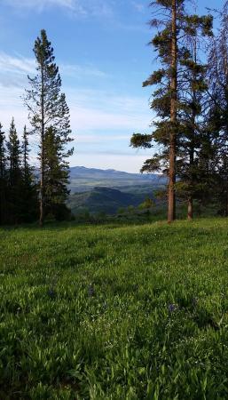 Crevice Mountain Lodge: My morning walk