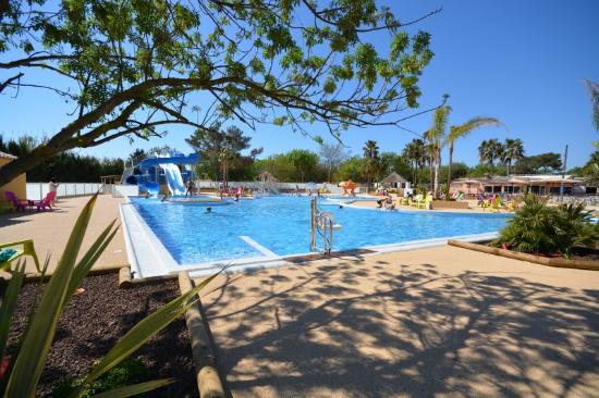 Piscine photo de camping port pothuau hy res tripadvisor for Piscine hyeres