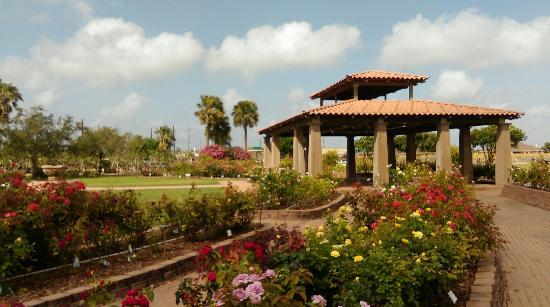 South Texas Botanical Gardens Nature Center Picture Of South Texas Botanical Gardens