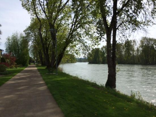 Willamette River bike trail: Trail