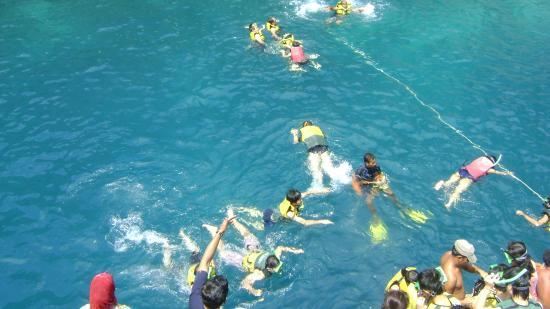 Phi Phi Islands : snorkelling
