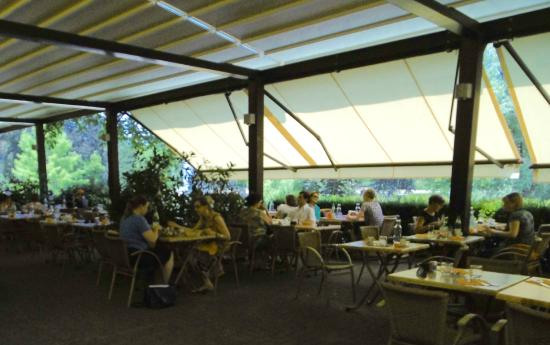 Picture of jardin de l 39 orangerie strasbourg for Jardin orangerie