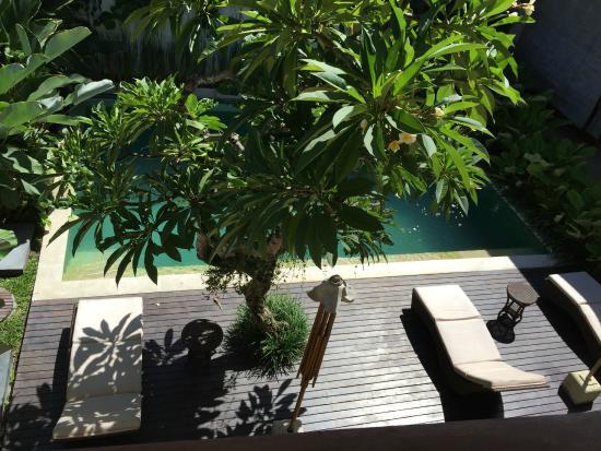 阳台客厅公寓式酒店照片
