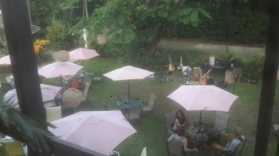 Gilded Iguana Hotel: Música en vivo.