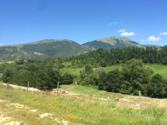 Agriturismo Pian d'Isola: Monte Cucco