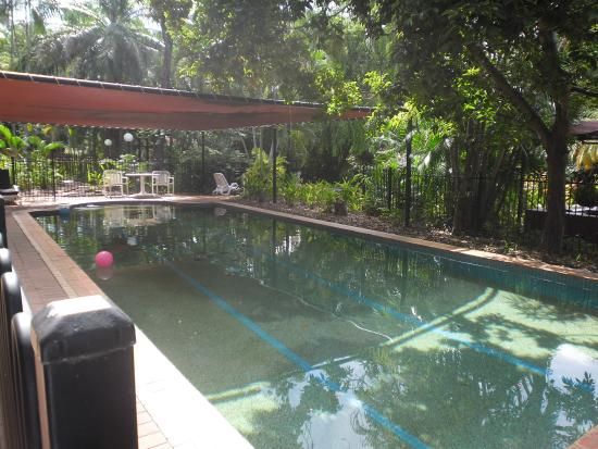 Parap Village Apartments : Covered pool