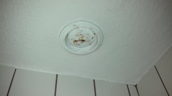 Tarp, Tyskland: loftventilator i badeværelse med skimmelsvamp