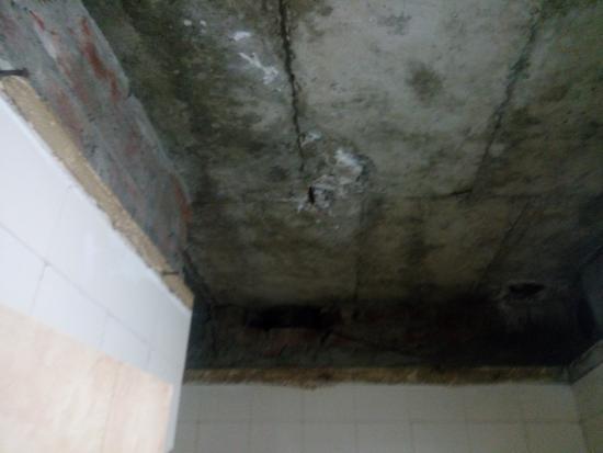 Neelkanth Inn: ceiling