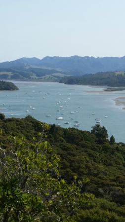 Whitianga Adventures: Scenic view above Whitianga