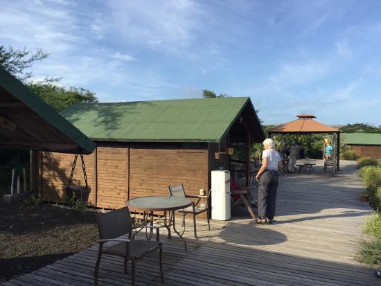 Floreana Lava Lodge: It's The Experience!
