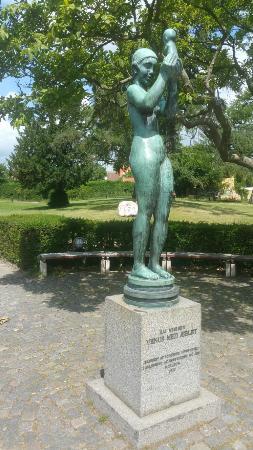 Venus Med Aeblet