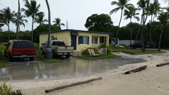 Captivating Harbor Lights Motel: Harbor Dump