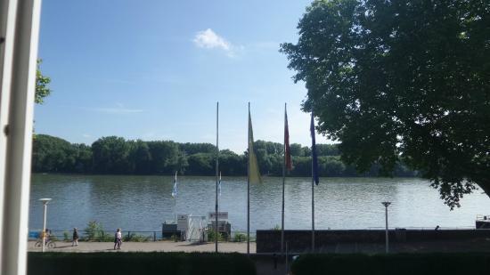 Am Schloss Biebrich: Sicht vom Zimmer im 1. OG