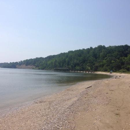 Flag Ponds Nature Park : Quiet nice lots of shells. Bring shade!  Watch for skinks ��������