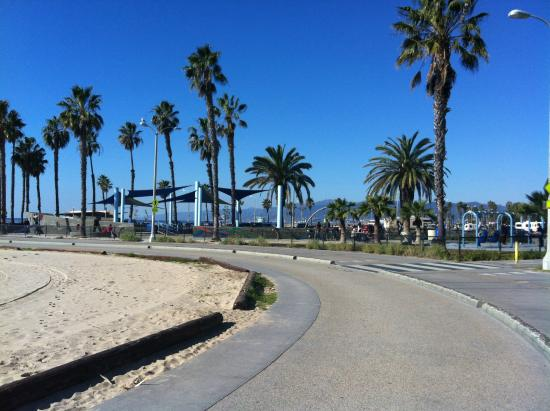 Hotels On Venice Beach California For Cheap
