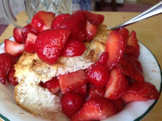 Swanton, OH: Strawberries and shortcake