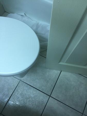 Holiday Inn Kearney: crammed toilet