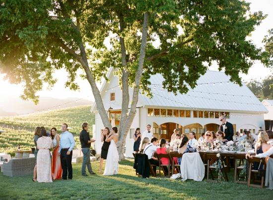 HammerSky Vineyards: Party