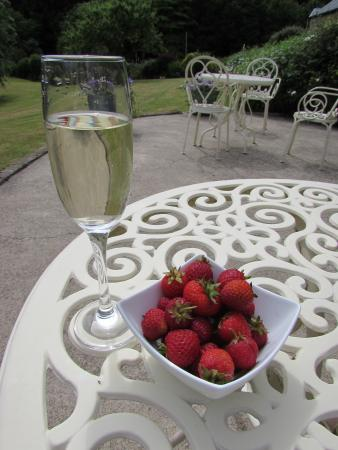 Broom House: Champagne and strawberries on the patio