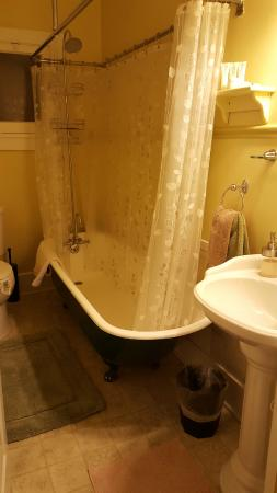 Dove Inn Bed and Breakfast : Old fashioned shower/tub combo
