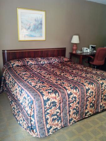 Red Carpet Inn: king size room