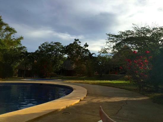 هوتل بلاا نيجرا: Pool...