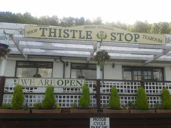 The Thistle Stop