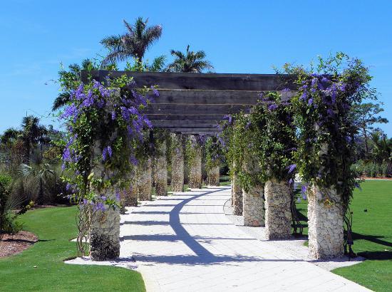 Naples Botanical Gardens Naples Fl Picture Of Naples Southwest Gulf Coast Tripadvisor