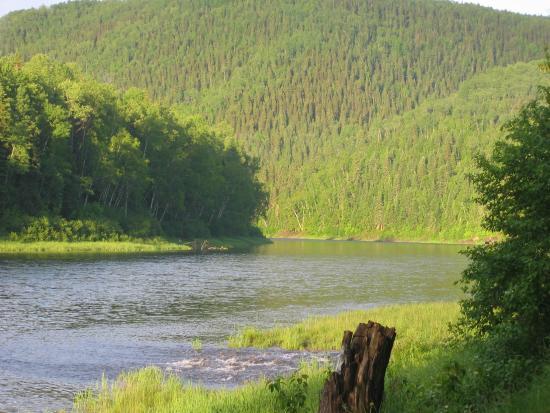 Kedgwick River, Canada: Rivière Restigouche River