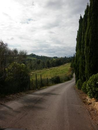 Borgo Collelungo