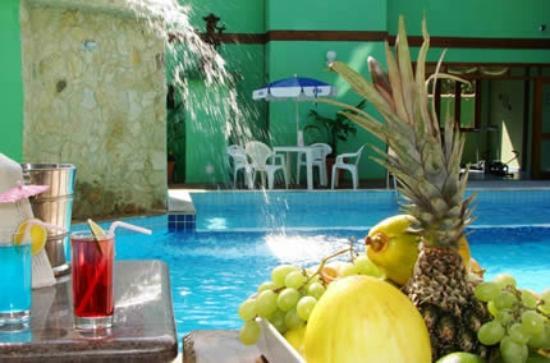 Pousada Recanto Verde Praia Hotel : Bar de piscina