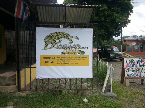 Jaguar Corcovado Tours