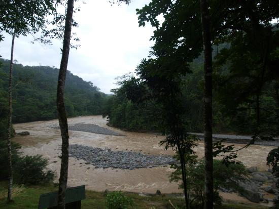 Rios Tropicales Lodge: View of the river from the lodge